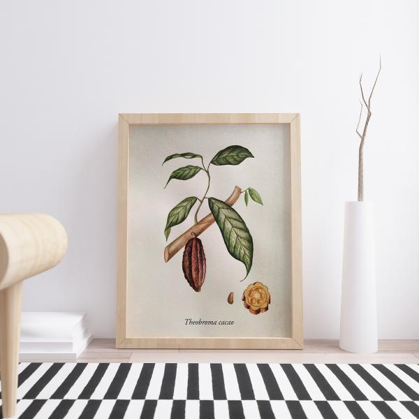 aquarela botanica